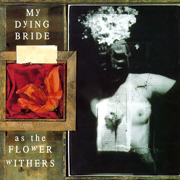 MY DYING BRIDE (uk) Album Cover